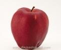 Ябълка Сорт Ред Чиф,apple Red Chief,Снимки Ябълки,Ябълка,Разсадник Ябълки,фиданки Ябълки,овошки Ябълки,сортове Ябълки,Разсадници Ябълки,