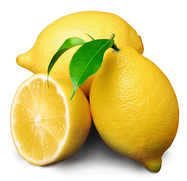 Дръвчета Лимони