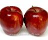Ябълка Сорт Супер Чиф,Apple super cif,Снимки Ябълки,Ябълка,Разсадник Ябълки,фиданки Ябълки,овошки Ябълки,сортове Ябълки,Разсадници Ябълки,